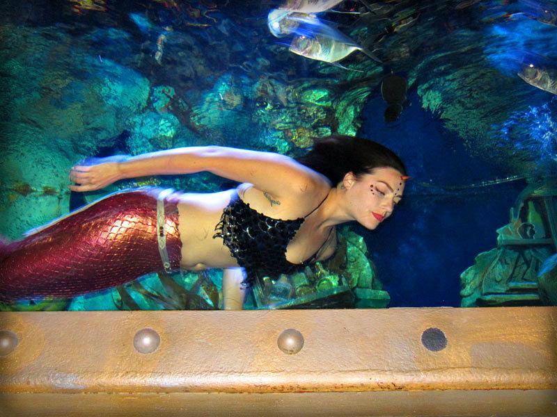 Mermaid @ The Dive Bar - Sacramento