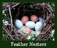ActiveRain Feather Nesters
